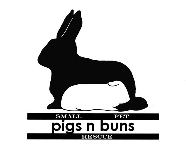 Welcome to the Pigs n Buns Small Pet Rescue website!